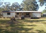 Foreclosed Home in Wesley Chapel 33545 BRIARTHORN LOOP - Property ID: 4082655797