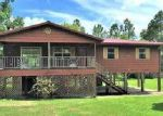 Foreclosed Home in Wewahitchka 32465 SPRUCE AVE - Property ID: 4086509526