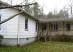 Foreclosed Home in Horse Shoe 28742 FAITH LN - Property ID: 4090231883