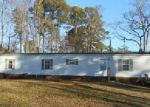 Foreclosed Home in Hudgins 23076 POWELL LN - Property ID: 4096947321