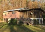 Foreclosed Home in Wewahitchka 32465 SEALY DR - Property ID: 4097578443