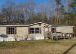 Foreclosed Home in Summerville 29483 GRANDE BELLE LN - Property ID: 4102711502