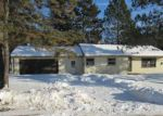 Foreclosed Home in Aurora 55705 LANE 55 - Property ID: 4105115989