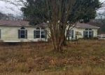 Foreclosed Home in Trinity 35673 COUNTY ROAD 319 - Property ID: 4105837766