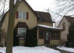 Foreclosed Home in Blue Earth 56013 S MOORE ST - Property ID: 4106976940