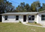 Foreclosed Home in Leesburg 34748 BRAEBURY DR - Property ID: 4112050868