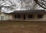 Foreclosed Home in Arley 35541 COUNTY ROAD 3948 - Property ID: 4116977180