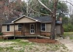Foreclosed Home in Elgin 29045 BLUE HORSE CIR - Property ID: 4117291207