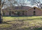 Foreclosed Home in Pittsburg 75686 TURTLE CIR - Property ID: 4118281925