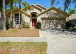 Foreclosed Home in Valrico 33596 CLARESIDE DR - Property ID: 4118337541