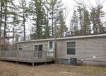 Foreclosed Home in Newaygo 49337 S NEWCOSTA AVE - Property ID: 4118440915