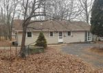 Foreclosed Home in East Stroudsburg 18302 LENAPE RD - Property ID: 4118631868