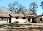 Foreclosed Home in Marianna 32448 THOMASVILLE LN - Property ID: 4121295617