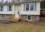Foreclosed Home in East Stroudsburg 18302 BRIARWOOD RD - Property ID: 4127887563
