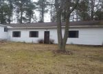 Foreclosed Home in Bitely 49309 N COMSTOCK AVE - Property ID: 4128961469
