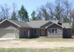 Foreclosed Home in Newaygo 49337 CROTON DR - Property ID: 4131643180