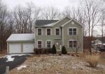 Foreclosed Home in Bushkill 18324 CHELSEA CT - Property ID: 4132806894