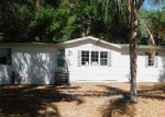 Foreclosed Home in Valrico 33594 PROPERTY LN - Property ID: 4132969819