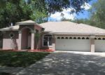 Foreclosed Home in Tampa 33625 WINDBRUSH DR - Property ID: 4133191427