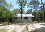 Foreclosed Home in Chipley 32428 QUAIL RIDGE DR - Property ID: 4133269829