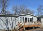 Foreclosed Home in Birchwood 54817 E BIRCH AVE - Property ID: 4133383252