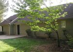Foreclosed Home in Heflin 36264 EVANS BRIDGE RD - Property ID: 4133836560