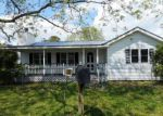 Foreclosed Home in Trenton 28585 ANDREWS RD - Property ID: 4138570625