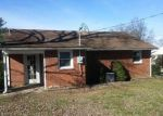 Foreclosed Home in Buena Vista 24416 LINDEN CIR - Property ID: 4138815445
