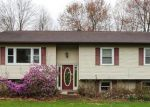 Foreclosed Home in Wallkill 12589 DELILAH LN - Property ID: 4140201639
