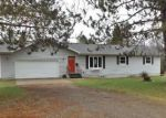 Foreclosed Home in Iron River 49935 IRON LAKE RD - Property ID: 4142734438