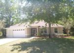 Foreclosed Home in Palm Coast 32164 PATRIC DR - Property ID: 4142941601