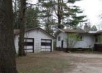 Foreclosed Home in Lena 54139 MACHICKANEE LN - Property ID: 4147048485