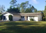 Foreclosed Home in Palm Coast 32137 BRUCE LN - Property ID: 4147805745