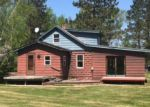 Foreclosed Home in Deer River 56636 STATE HIGHWAY 6 - Property ID: 4148988715