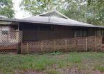Foreclosed Home in Mc Alpin 32062 158TH TER - Property ID: 4152255556