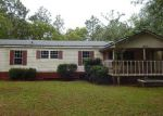 Foreclosed Home in Middleburg 32068 COTTONTAIL CT - Property ID: 4153396478