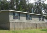 Foreclosed Home in Berkeley Springs 25411 POSEY HOLLOW RD - Property ID: 4156582297