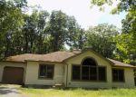 Foreclosed Home in Bushkill 18324 SEGATTI CIR - Property ID: 4156997952