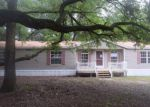 Foreclosed Home in Lithia 33547 PRITCHER MANOR CT - Property ID: 4157471835