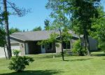 Foreclosed Home in Bemidji 56601 AVERI CIR NW - Property ID: 4160818832