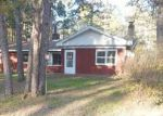 Foreclosed Home in Britt 55710 N FOREST LN - Property ID: 4160819250