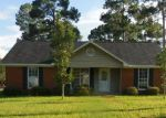 Foreclosed Home in Leesburg 31763 TALL PINES DR - Property ID: 4161753453