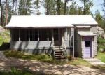 Foreclosed Home in Custer 57730 LITTLE ITALY RD - Property ID: 4162621980
