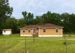 Foreclosed Home in Saint Augustine 32092 COUNTY ROAD 208 - Property ID: 4163145786