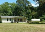 Foreclosed Home in Jacksonville 28546 DAYLILY LN - Property ID: 4163381857