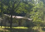 Foreclosed Home in Mineral Bluff 30559 HUMPHREY MILL RD - Property ID: 4189252537