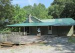 Foreclosed Home in Spring City 37381 WILDER RD - Property ID: 4196256167