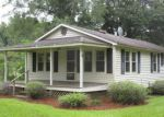 Foreclosed Home in Andrews 29510 CUMBIE RD - Property ID: 4197287158