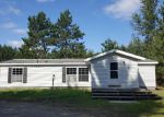 Foreclosed Home in Kalkaska 49646 M 66 SW - Property ID: 4208484405
