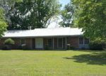 Foreclosed Home in Elizabethtown 28337 OWEN HILL RD - Property ID: 4212462529